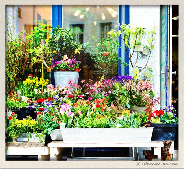 Psynopsis Flowershop Berlin Kreuzberg
