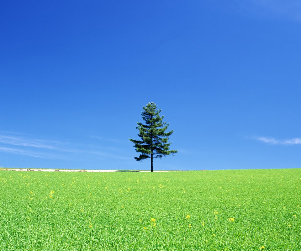 Free Tablet PC Background Wallpaper