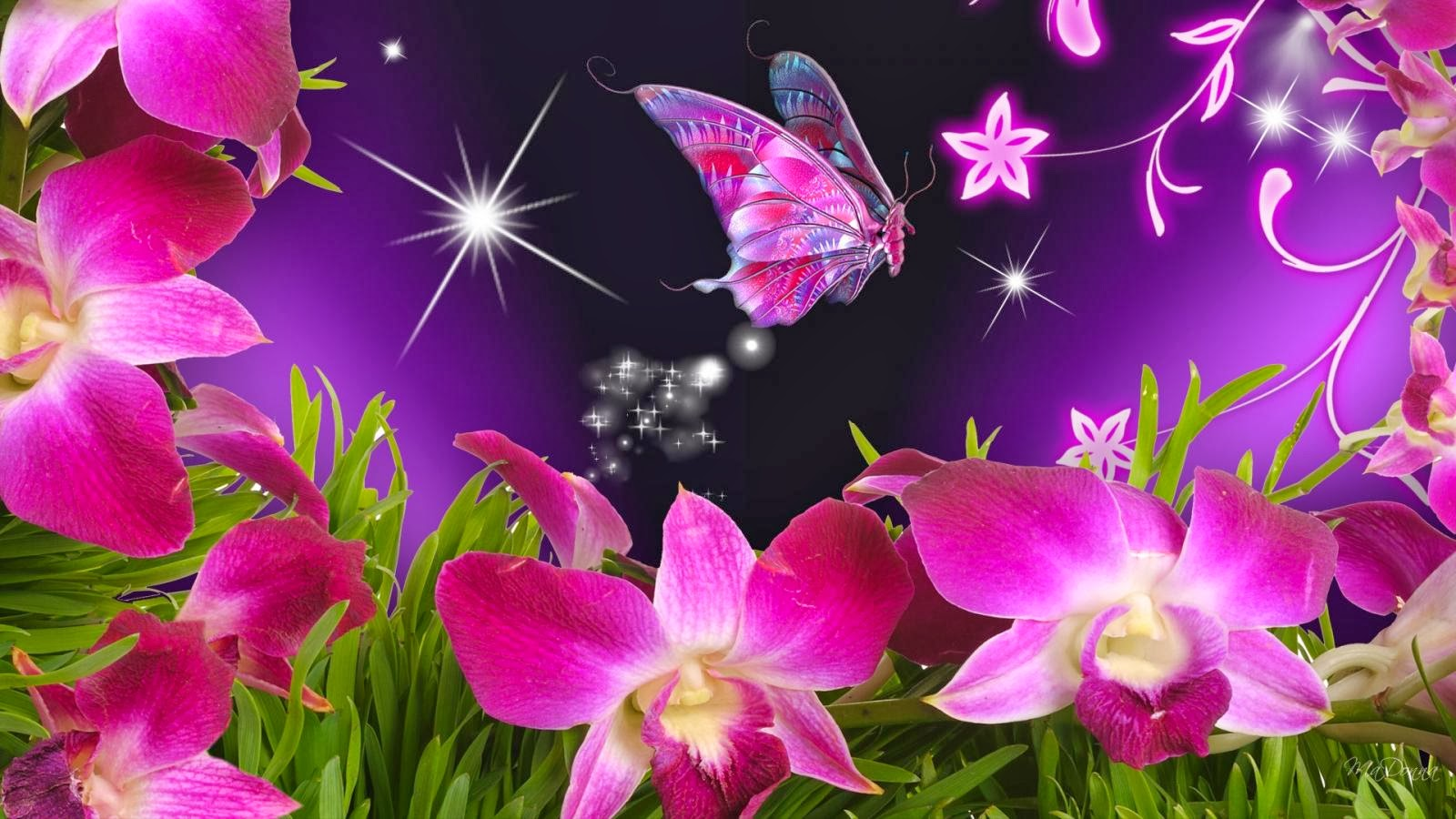 Wallpaper Violet Orchids And Beautiful Butterfly Beautiful Desktop