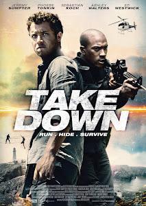 Take Down Poster