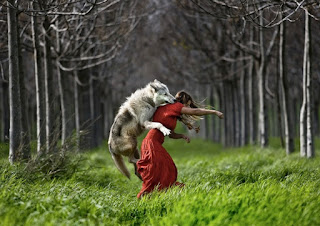 How Could Red Riding Hood (Have Been So Very Good)?