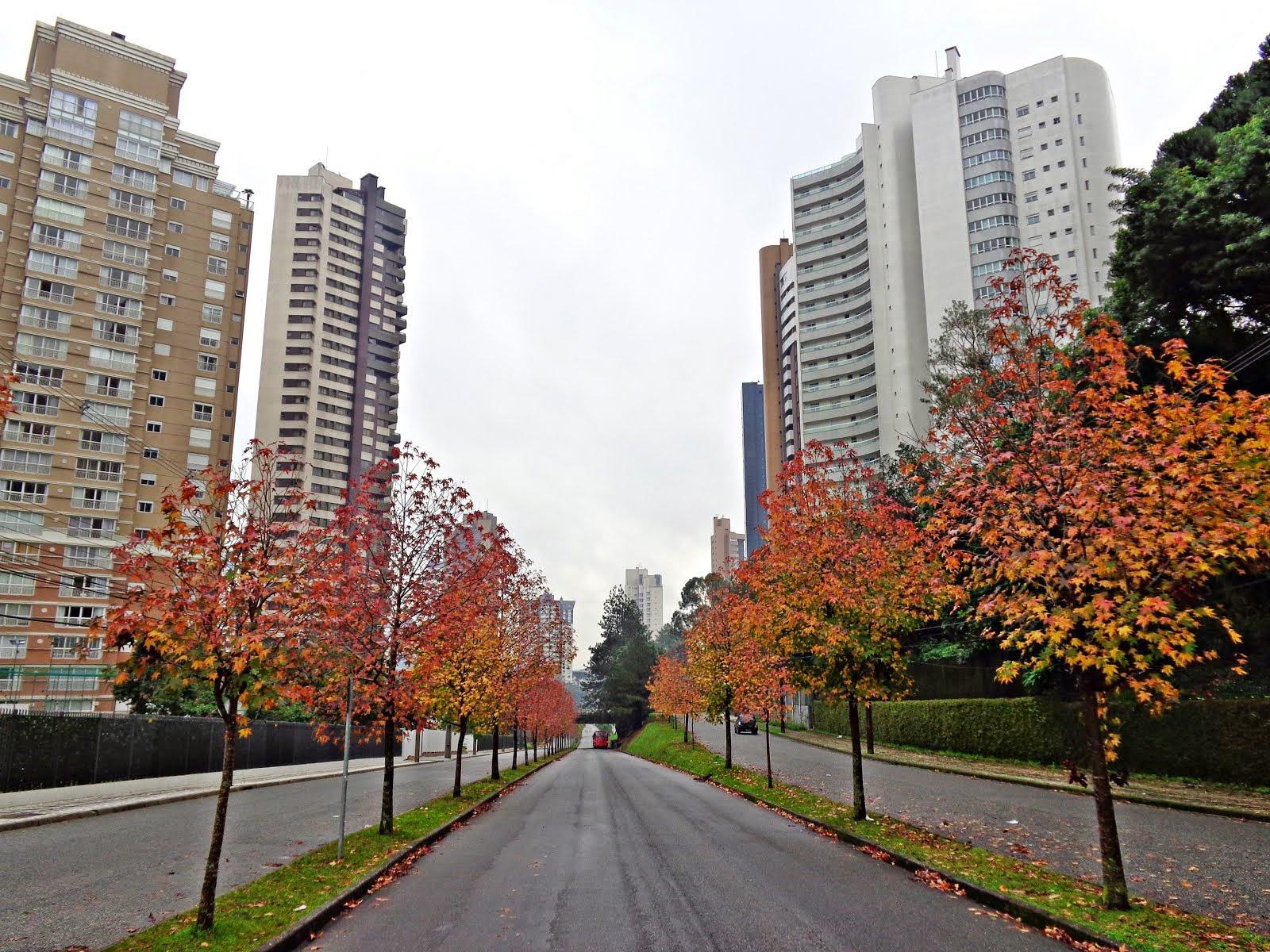 Inverno em  Curitiba- canaleta sentido Campo Comprido