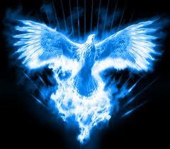 Feni azul 2