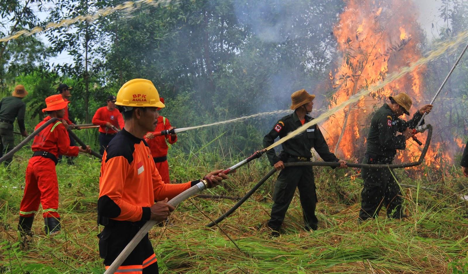 Jelang Kemarau, Kalteng Antisipasi Kebakaran Lahan