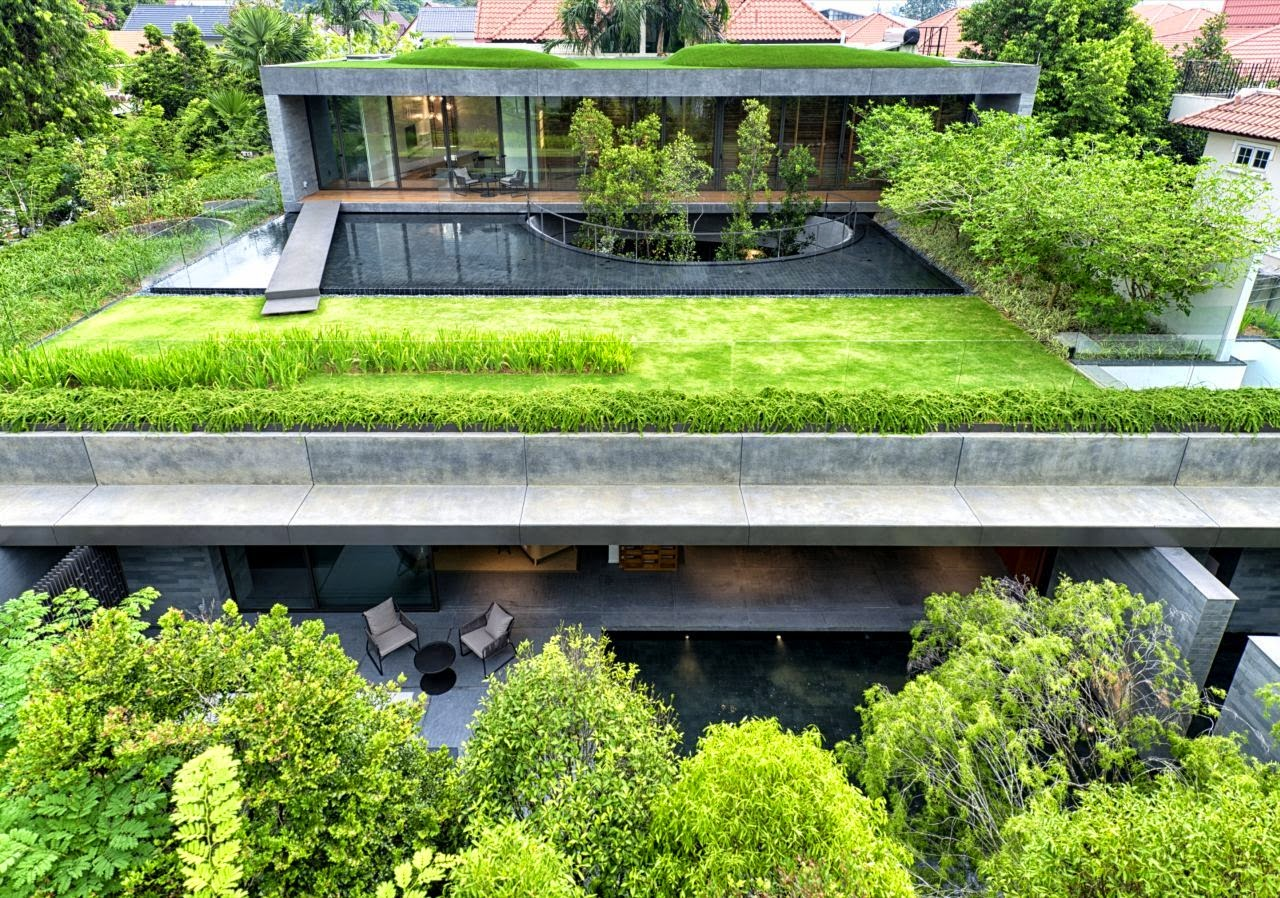 Green roof house in singapore the wall house modern for Pool garden house