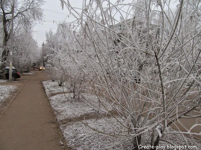 изморозь деревья