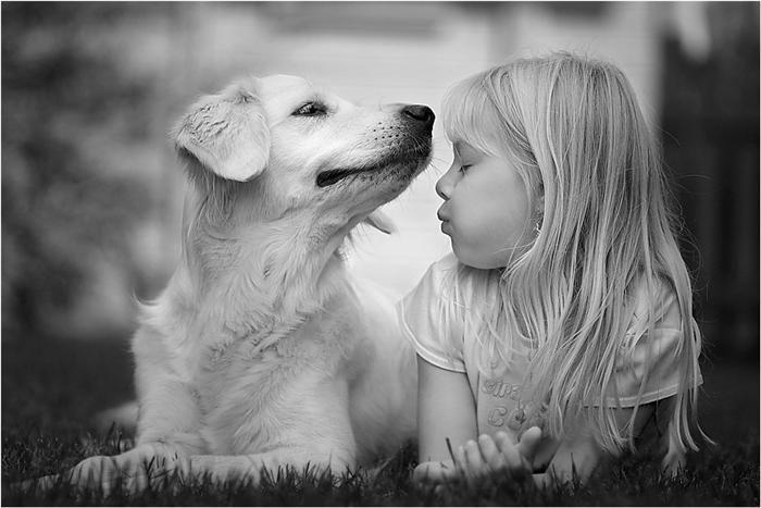 pet  Cães e Crianças Cuidasdos Importantes
