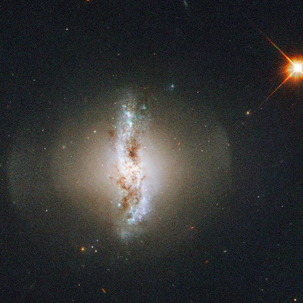 Ringed Lenticular Galaxy Arp 230