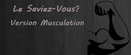 Le Saviez-Vous? Version Musculation