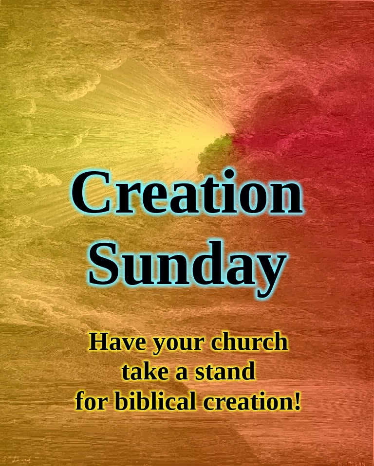 Creation Sunday, Tony Breeden