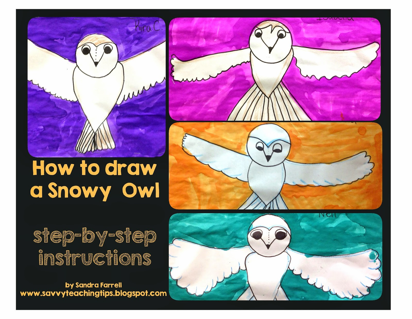 drawing snowy owls savvy teaching tips