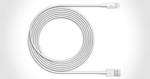 10 ft. Cable for iPad & iPhone