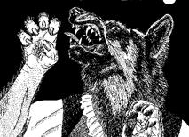http://www.looneylabs.com/games/werewolf