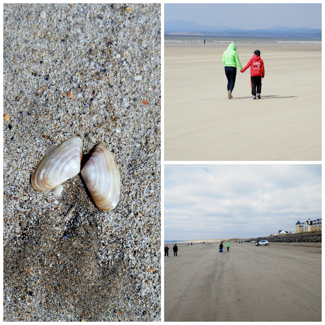 Rossnowlagh April 2013