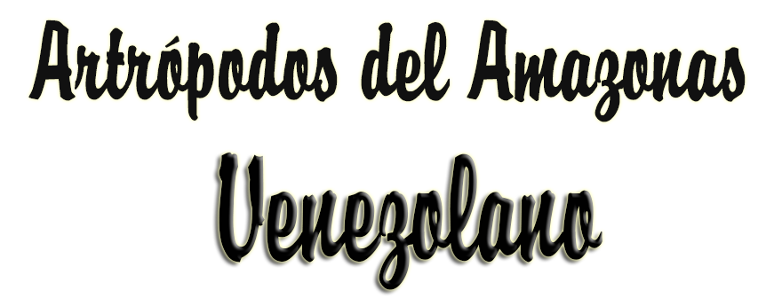 Artrópodos del Amazonas Venezolano