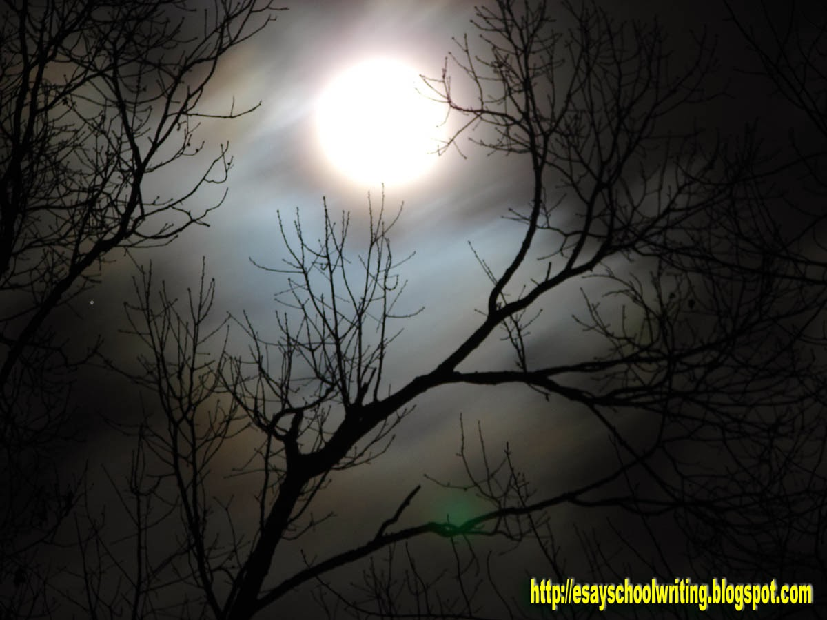 paragraph a moonlit night