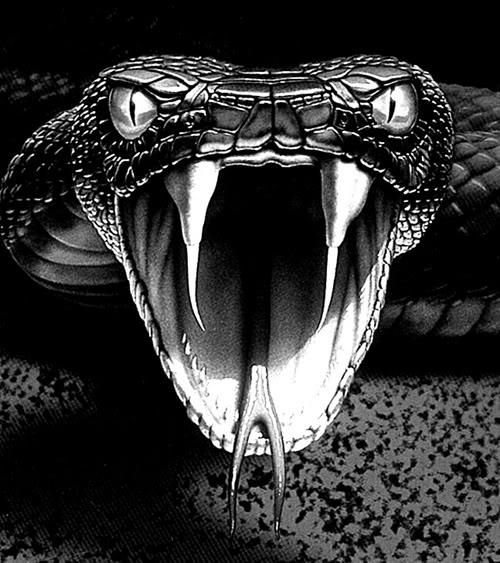 King Viper Snake