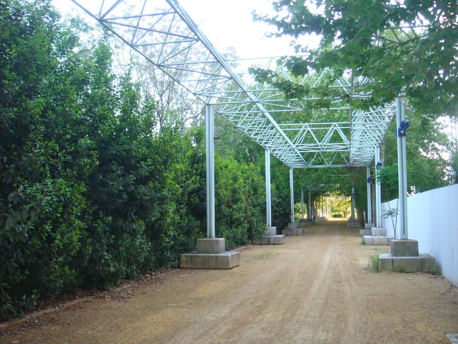 Sevilla contempor nea reapertura jardines del guadalquvir for Jardines del eden sevilla