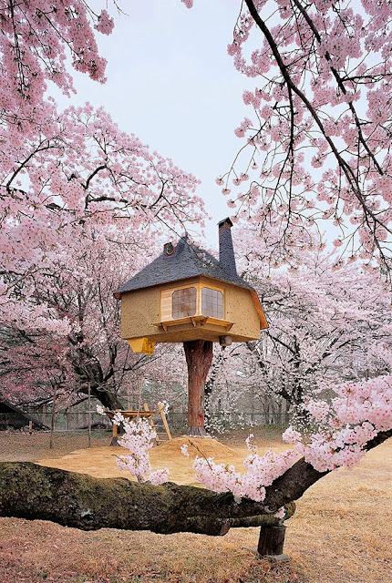 magical-fairy-tale-houses-dreamlike-architecture-8