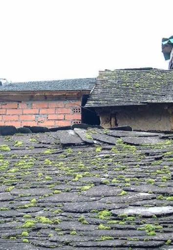 Peritararquitectura falta de mantenimiento en cubiertas de pizarra - Cubierta de pizarra ...