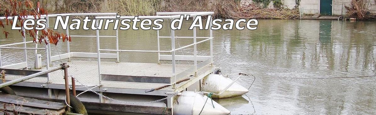 Les Naturistes d'Alsace