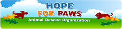 The Book of Barkley Supports Hope for Paws