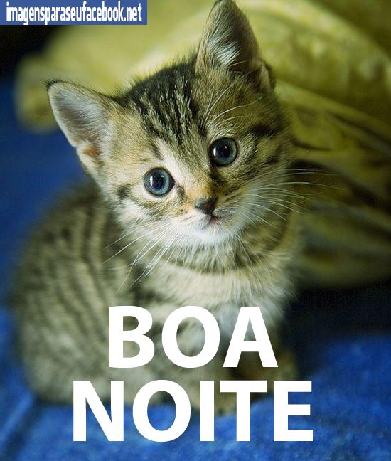 Amado Imagens para facebook - Boa Noite RX91