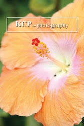 Hawaiian STOCK Photography