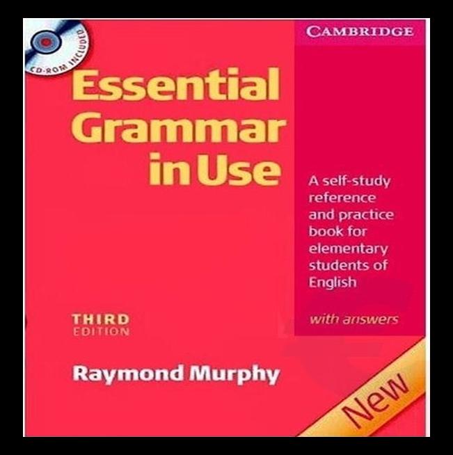 essential grammar in use 3rd edition pdf