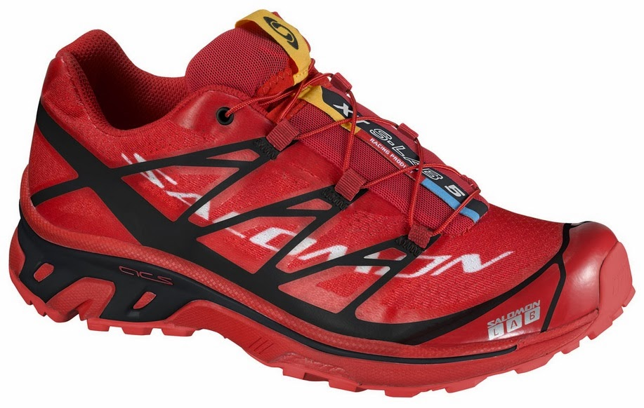 salomon v a salomon co ltd essay