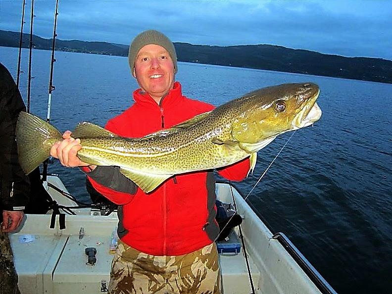 Norwegian cod