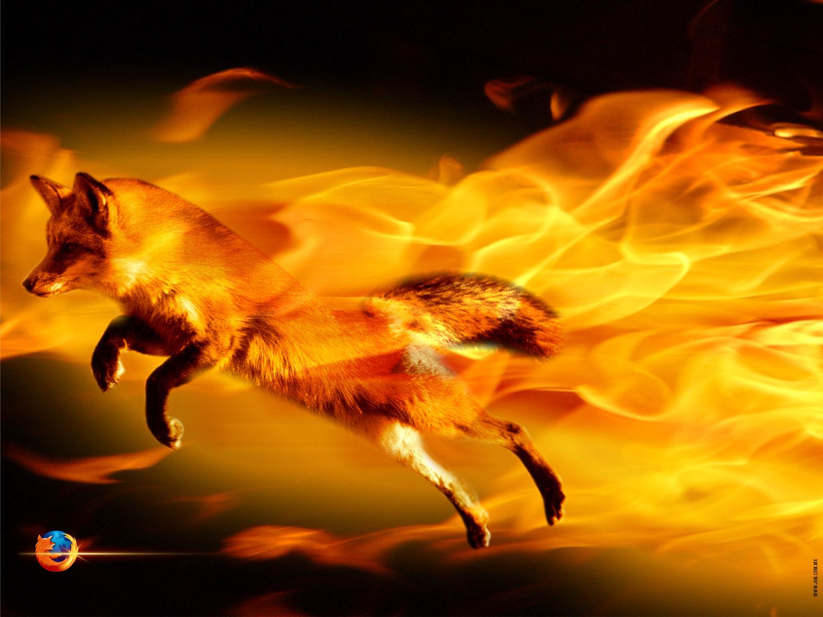 http://4.bp.blogspot.com/-IJSpCSM7XrA/T8A9FlKE8LI/AAAAAAAAGnI/kIPtlVs2k18/s1600/the_firefox_by_djog.jpg