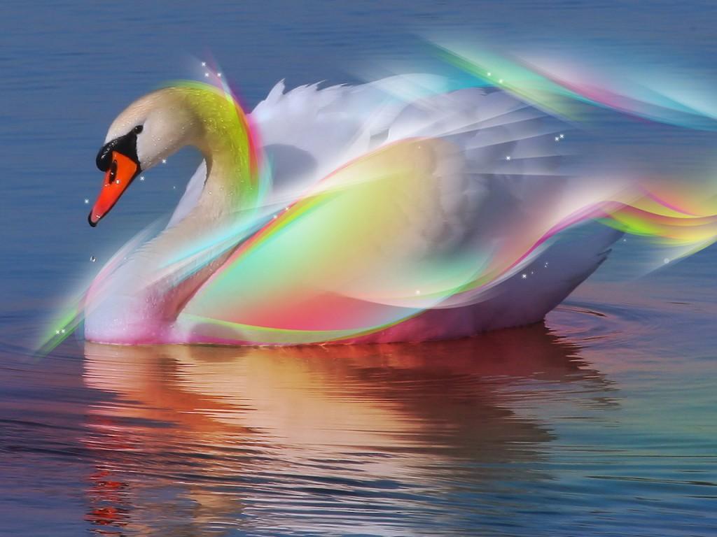 http://4.bp.blogspot.com/-IJT0qH0q8cU/UDSCZZ4GuoI/AAAAAAAAAJE/4Wa5OePhs7I/s1600/3D+Goose+wallpaper.jpg
