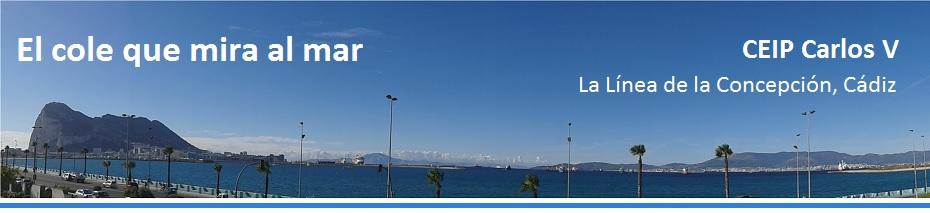 El cole que mira al mar: CEIP Carlos V