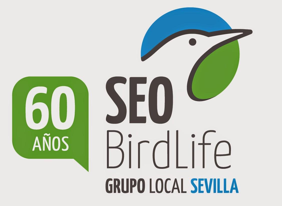 XV Curso de iniciación a la Ornitología. Edición 2015. Grupo Local SEO-Sevilla de SEO/BirdLife. Ver, conocer y conservar las aves y sus habitats.