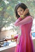 Vithika Sheru Photos at Prema Ishq Kadhal Success Meet-thumbnail-3