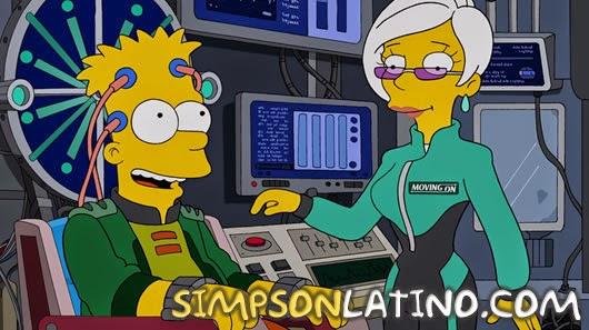 Los Simpson 25x18
