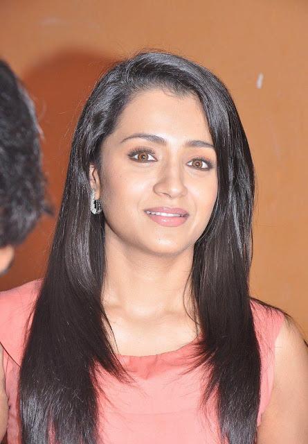 Trisha half saree pics