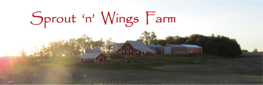 Sprout 'n' Wings Farm