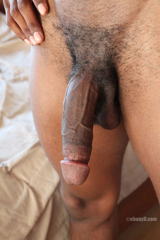 Big black dick and balls