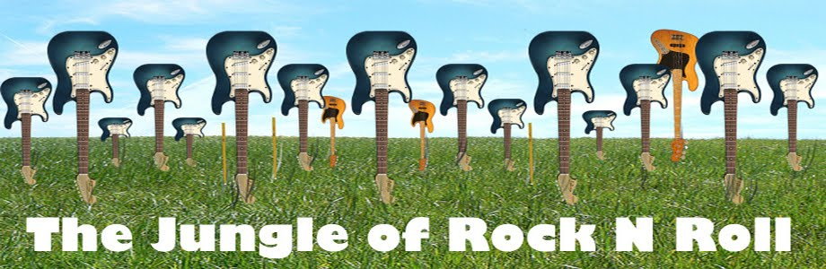 The Jungle of Rock N Roll