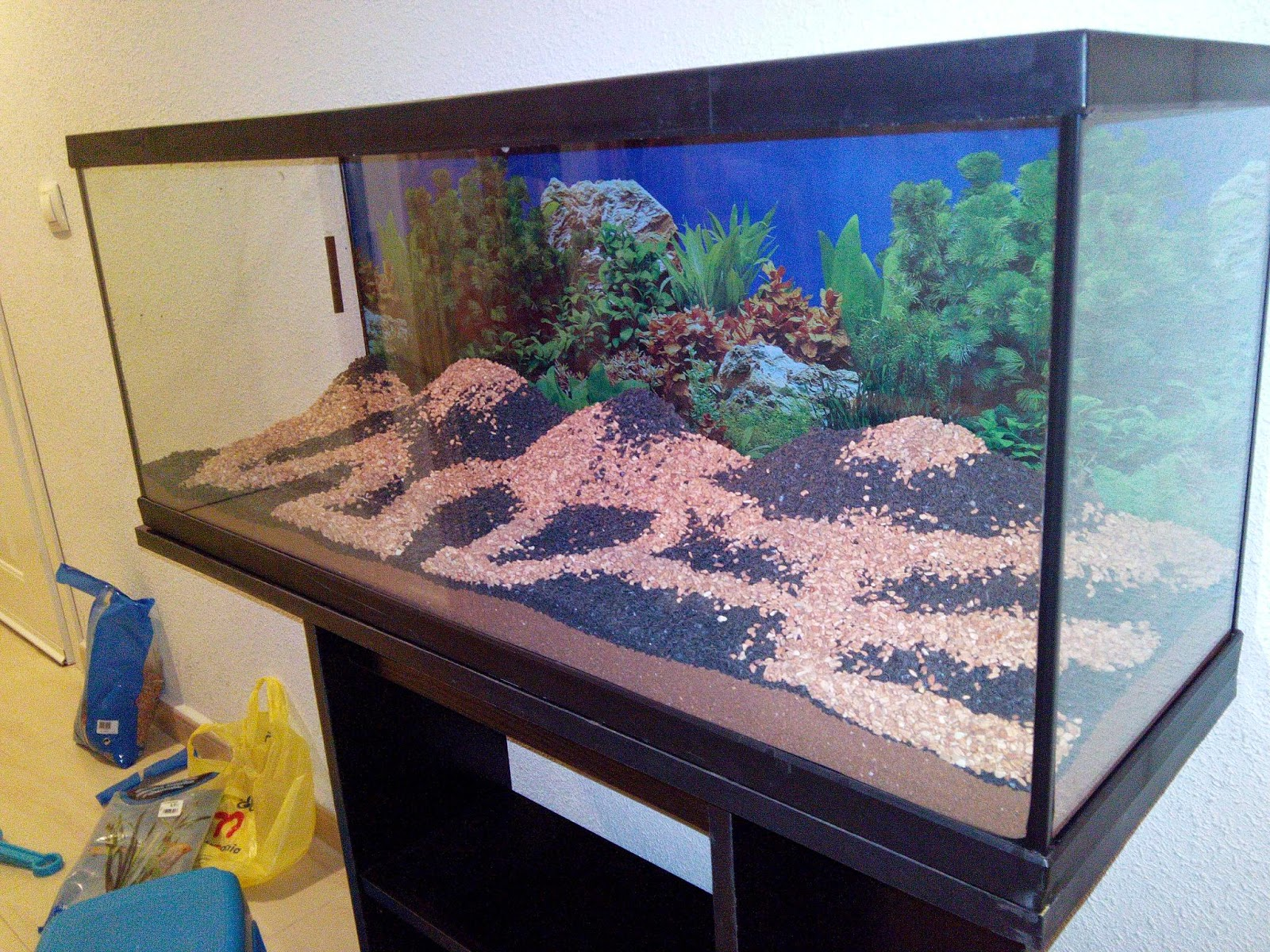 Decoración del acuario