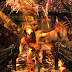 Shadow Warrior : The Lo down on this FPS reboot