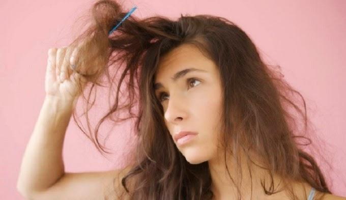 بعض الحلول السحرية لعلاج الشعر الجاف
