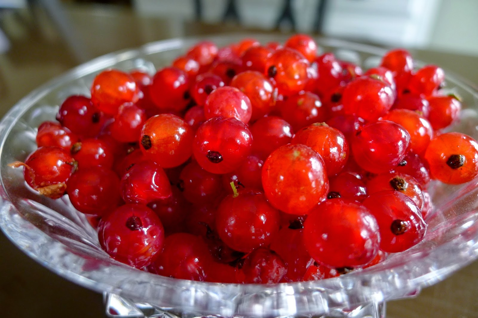 Red Currants, red currant jelly, preserving