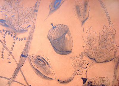 Acorn and Leaves Drawing
