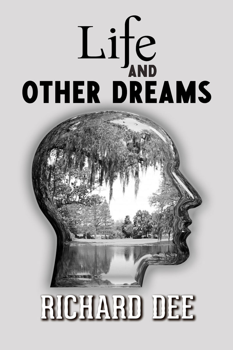 Try My Latest Novel