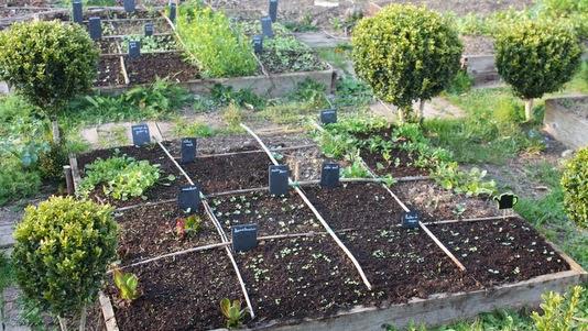 Merci qui merci montessori travaux dans mon jardin 2014 for Jardin potager en carre