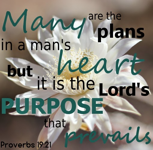 but it is the Lord's purpose that prevails Proverbs 19:21