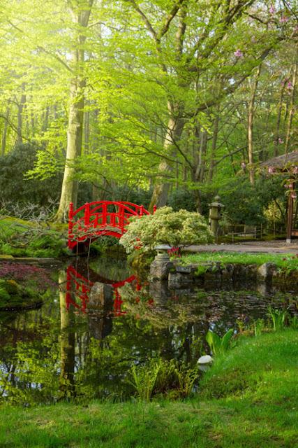 20 cảnh đẹp nổi tiếng của du lịch Hà Lan